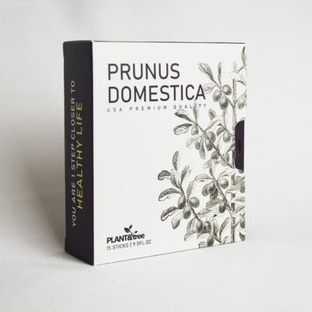 Prunus Domestica 18g 15s