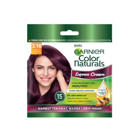 Garnier Color Naturals Express Cream 3.16 Burgundy