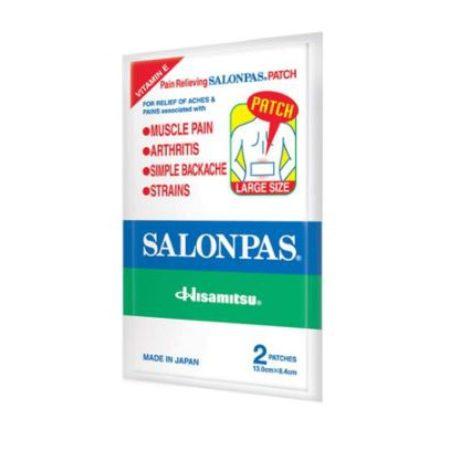 Hisamitsu Salonpas Patch L-size 2s