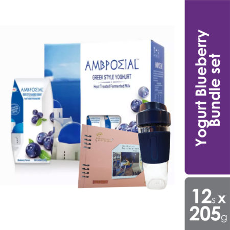 Anmuxi Yogurt Blueberry Bundle set 205g x 12s