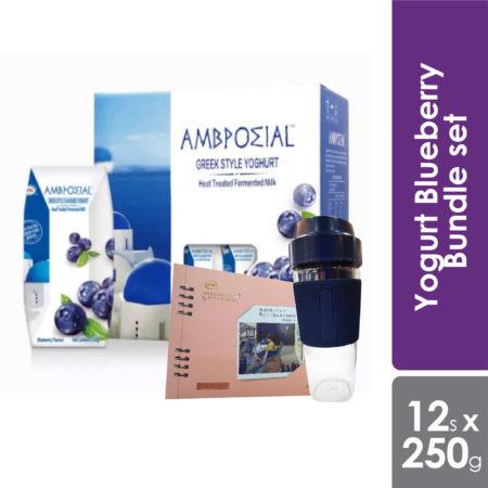 Anmuxi Yogurt Blueberry Bundle set 205g x 12s